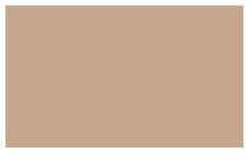 insync logo